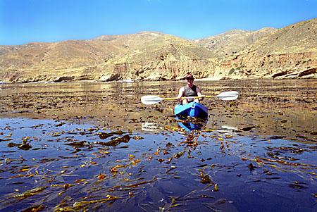 Paddling in the kelp at Johnson's Lee, Santa Rosa Island