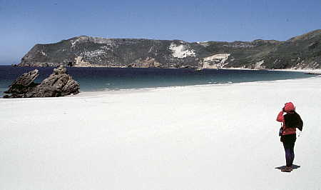 White sand beach of Cuyler Harbor, San Miguel Island