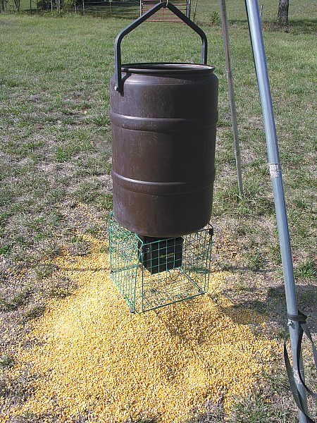 Emptying the barrel of corn