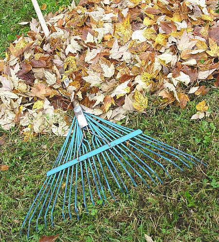 Steel tined leaf rake