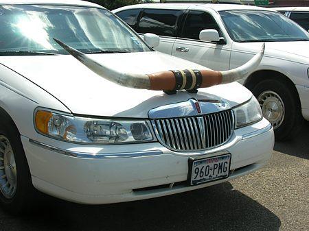 Big Lincoln longhorn limousine