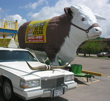 Big Cadillac longhorn limousine and big model steer
