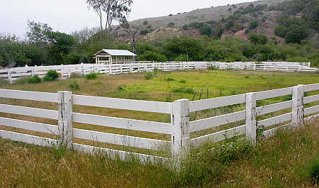 Remnants of the island's ranching past abound on Santa Cruz Island