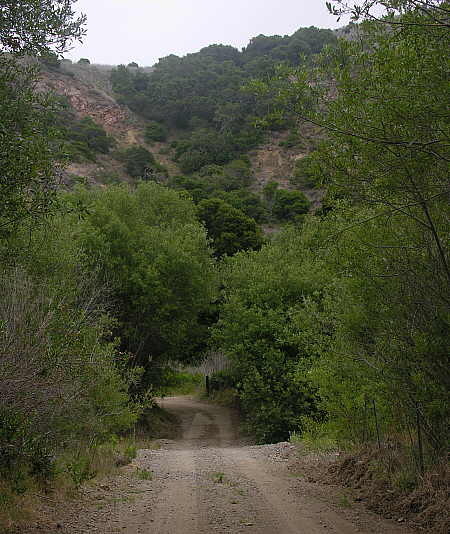 Road leading away from Scorpion ranch area into island interior