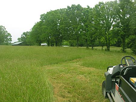 Trail through the hay