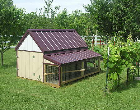 New hen house for the chickens
