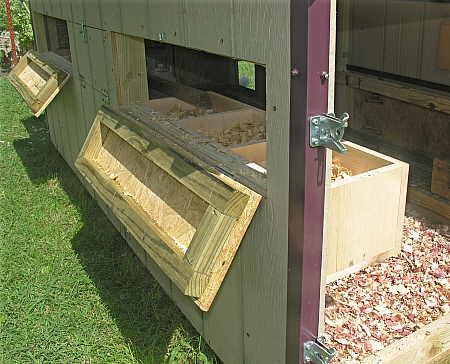 Egg doors for nesting boxes