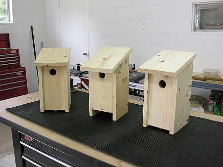 A few prototype bluebird nesting boxes