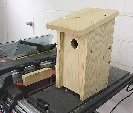 Front-opening bluebird nesting box